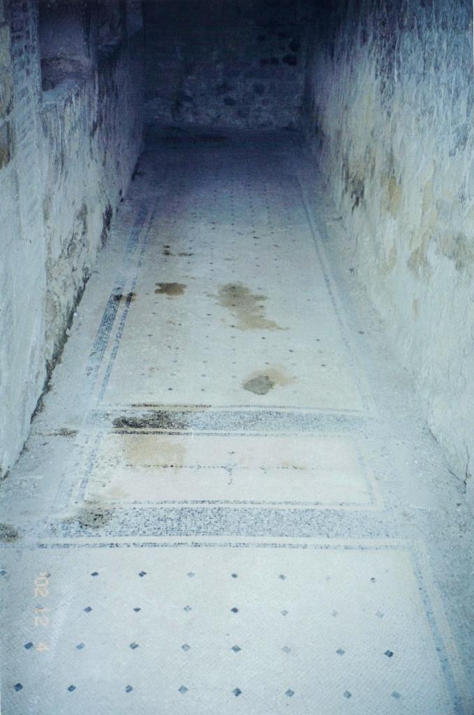 Black & White Mosaic Floor in a Corridor, House of the Alcove, Herculaneum