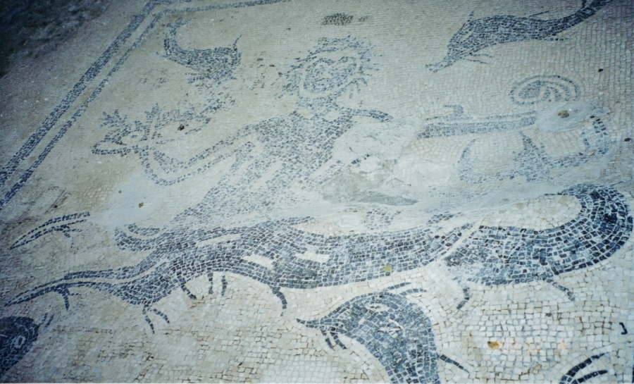Marine Mosaic Floor, women's section, Forum Baths, Herculaneum